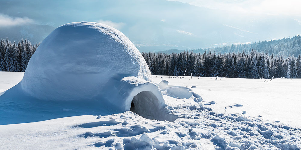 Winter landscape featuring an igloo